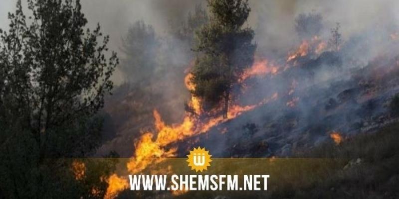 باجة: تواصل عمليات الإطفاء بعد اندلاع 3 حرائق بتيبار