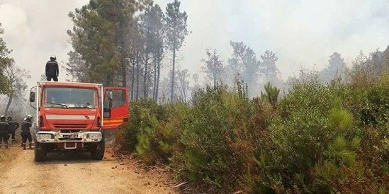 ولاية بنزرت: السيطرة على حريقين والعمل جار لإخماد حريق ثالث