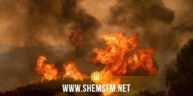 القصرين: حريقان في عمق المنطقتين العسكريتين بالسلوم وسمامة