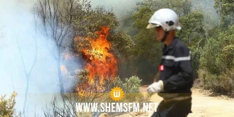 جندوبة: السيطرة على 7 حرائق بـ3 معتمديات