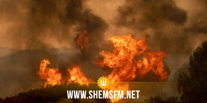 الكاف: إندلاع 4 حرائق في 3 معتمديات