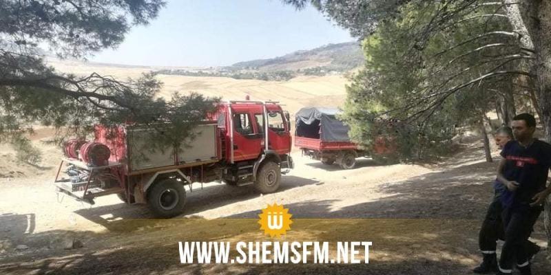 باجة: النيران أتلفت 820 هكتارا من المساحات الغابية في جبل صباح