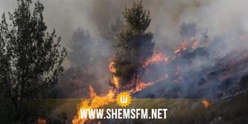 بنزرت: إخماد حريق بالمنطقة الغابية مكنة بماطر