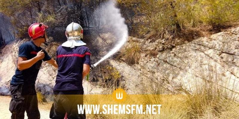 موجة من الحرائق المتزامنة في مناطق غابية بلغ عددها 42 حريقا