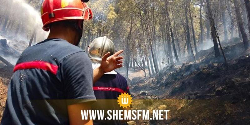 السلط الامنية تعهدت بالبحث في أسباب اندلاع موجة من الحرائق المتزامنة