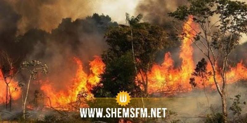 رفراف : إندلاع حريق هائل بجبل الناظور