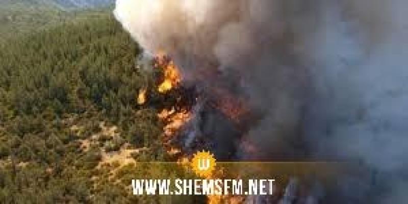 غار الملح: السيطرة على حريق جبل الناظور والنيران تأتي على أكثر من 8 هكتارات