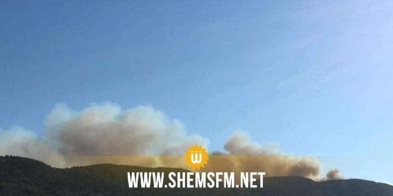 رفراف : النيران تشتعل من جديد في جبل الناظور