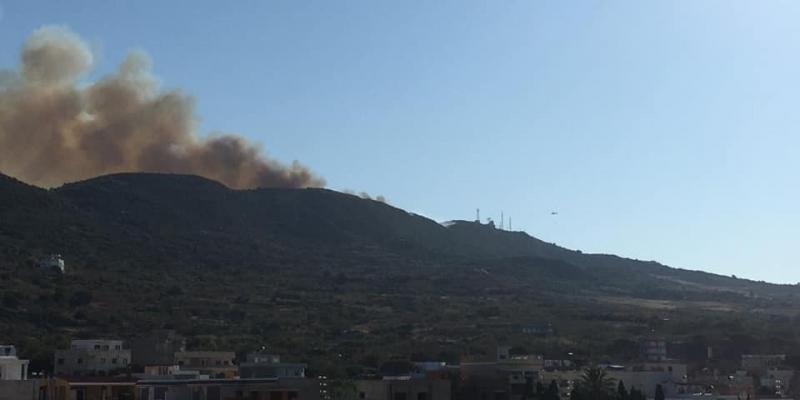 غار الملح: إخماد حريق جبل الناظور والنيران تأتي على 50 هك