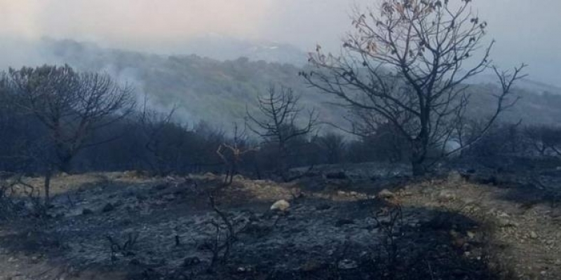 غار الملح: إخماد حريق جبل الناظور للمرة الثالثة على التوالي