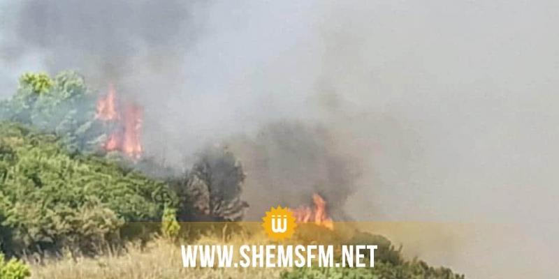 حريق هائل ينتشر على امتداد عدة مناطق غابية في بنزرت الجنوبية