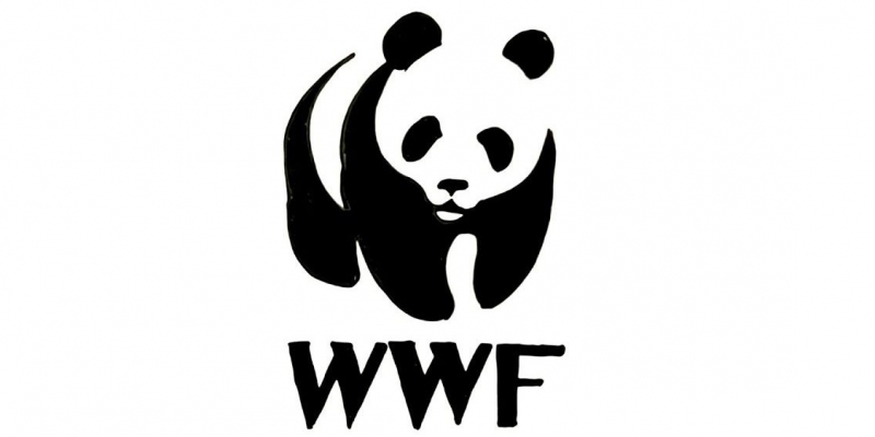 الصندوق العالمي للطبيعة يدعو سعيّد إلى توقيع إعلان القادة من أجل الطبيعة والإنسان