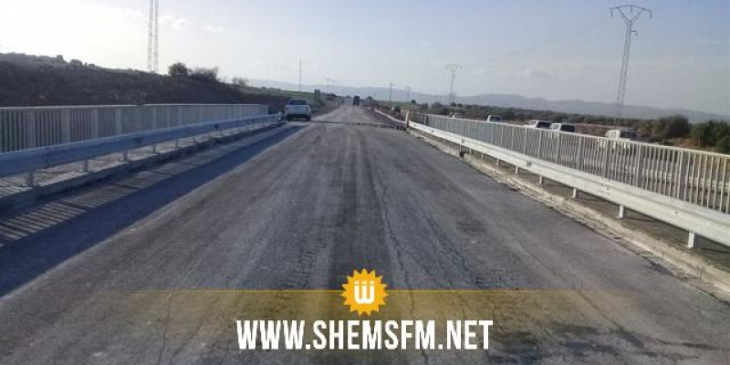 سليانة: قريبا دخول مشروع جسر وادي بوعرادة حيز الاستغلال