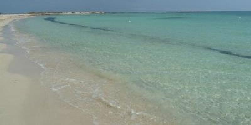 صفاقس: تغير لون البحر ورفع عينات للتحليل