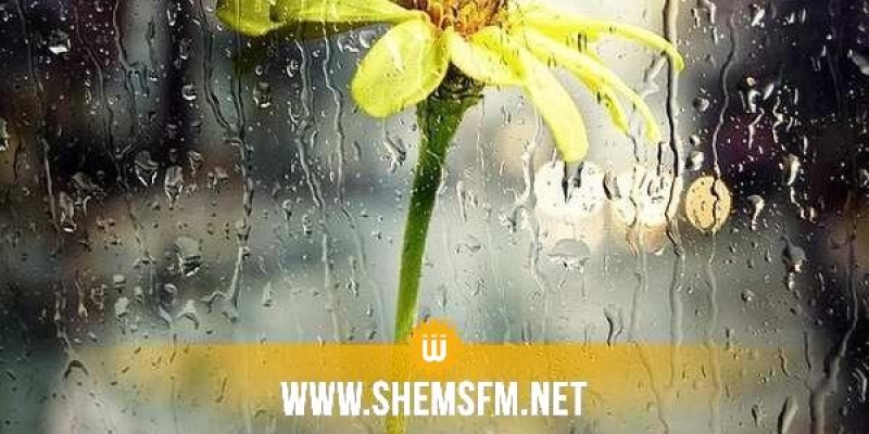 كميات الأمطار خلال الـ24 ساعة الأخيرة