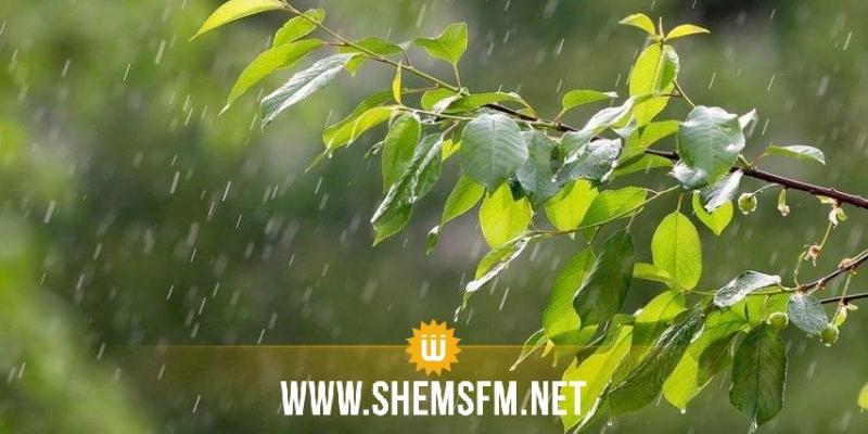 اليوم: رياح قوية مع أمطار والحرارة في انخفاض
