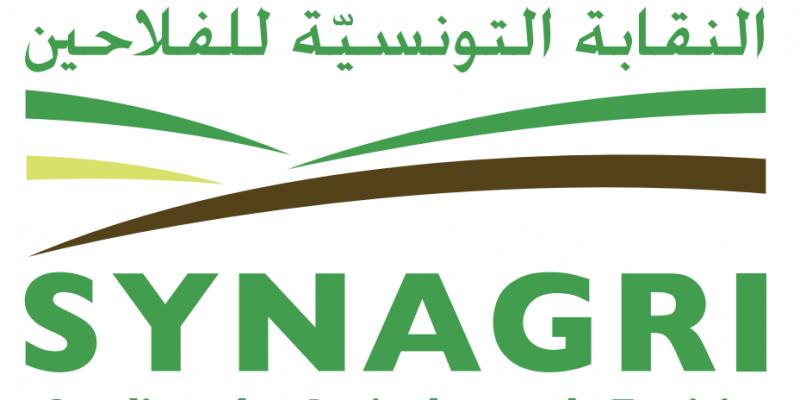 نقابة الفلاحين تطالب بتوجيه الدعم المخصص لتصدير الحليب والطماطم لتنشيط الإستهلاك المحلي
