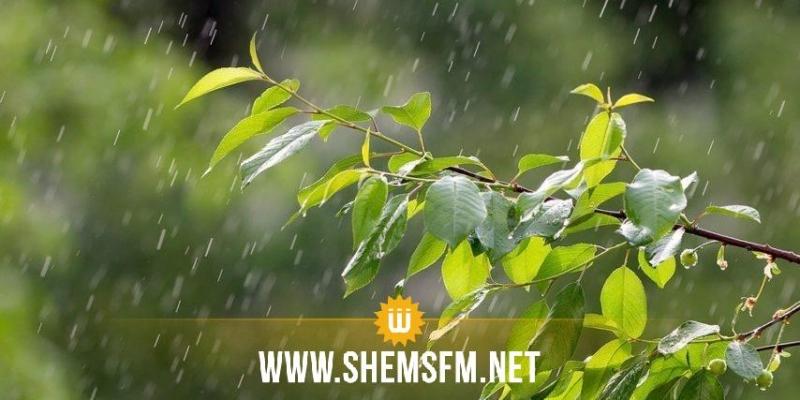 أمطار متوقعة اليوم في عدة مناطق