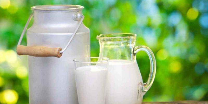 النقابة التونسية للفلاحين: 'قرار التوقف عن تجميع الحليب سيزيد في إضرار المربين'