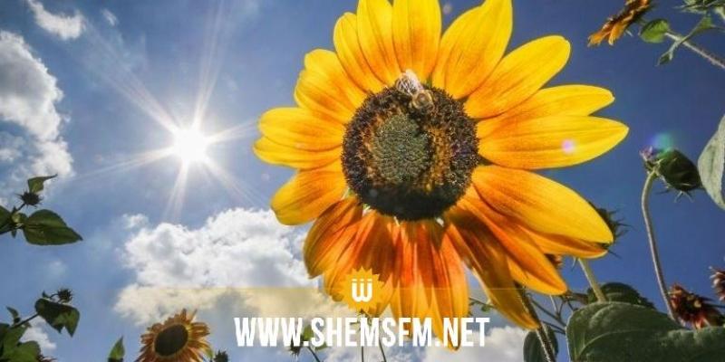 Météo : Temps estival et températures en hausse