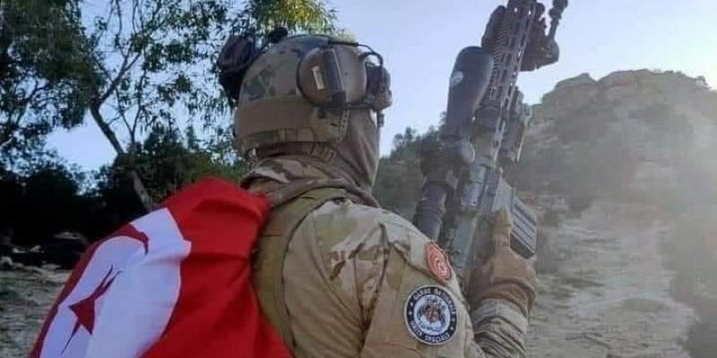 القضاء على عناصر إرهابية في مرتفعات القصرين
