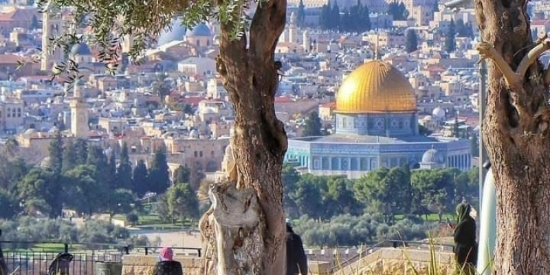 نقابة القضاة تدعو المجتمع الدولي والمؤسسات الحقوقية إلى التصدّي لجرائم الكيان الصهيوني
