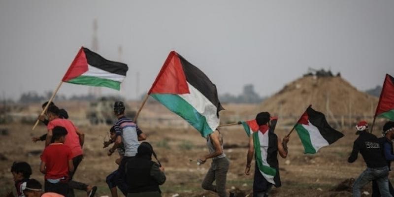 العدوان الصهيوني على فلسطين: ارتفاع عدد الشهداء إلى 237 شهيدا
