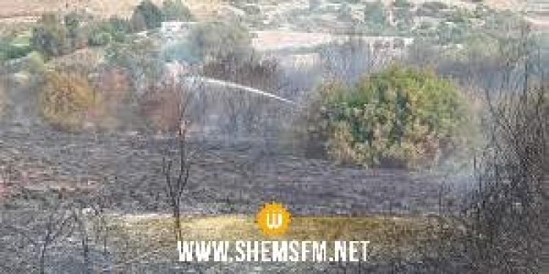 بنزرت: السيطرة على حريق كاف غراب والنيران تلتهم حوالي 7هكتارات من النسيج الغابي