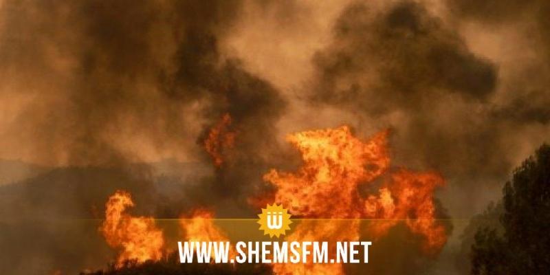 منوبة: حريق بجبل حماد في الجديدة