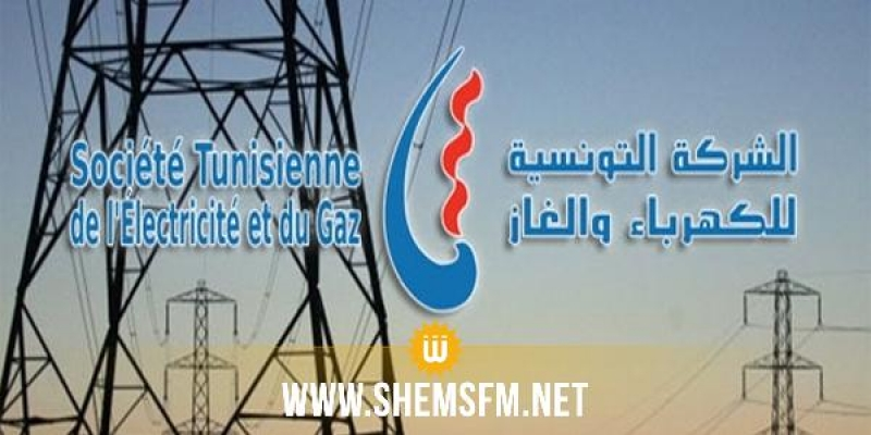 La coupure de l'électricité à Kairouan est due à un oiseau qui a percuté deux éléments chargés