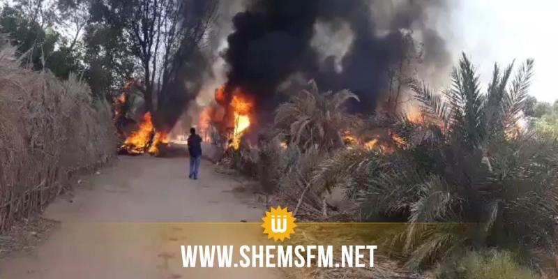 توزر: حريق في الواحة القديمة يلحق أضرارا  بحوالي 50 شجرة نخيل
