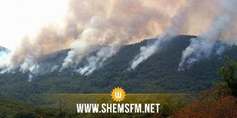 سيدي بوزيد: حريق متواصل منذ 3 أيام في المنطقة العسكرية المغلقة بجبل مغيلة