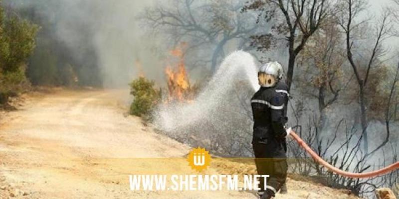 القيروان: اندلاع حريق هائل بمحمية زغدود والعديد من العائلات تغادر منازلها