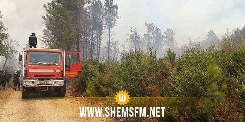 جندوبة: اندلاع 15 حريقا