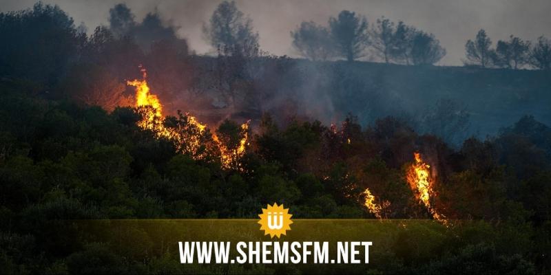 حندوبة: تواصل المجهودات لإخماد النيران بجبل علام ومنعها من الوصول للتجمعات السكنية