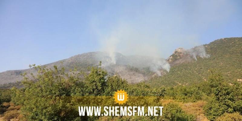 بنزرت: اندلاع حريق بجبل سيدي خلف والعمل جار من أجل السيطرة عليه