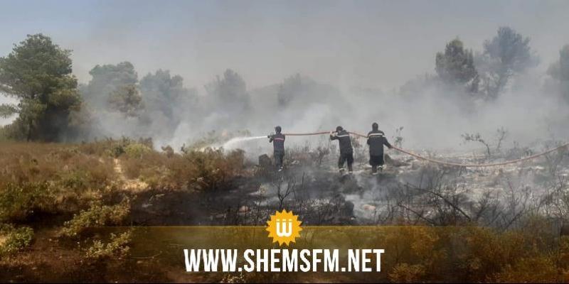 أتى على 1500 هكتارا من الغابات: السيطرة على حريق منطقة فج حسين في جندوبة