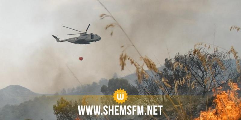 خلال 4 أيام: جيش الطيران ينفذ 63 طلعة جوية للمساهمة في إخماد الحرائق