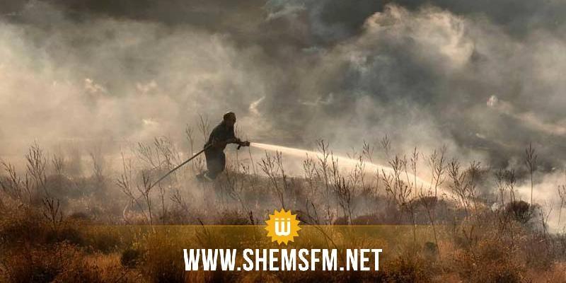 السيطرة على الحريق الذي نشب في غابات تيبار