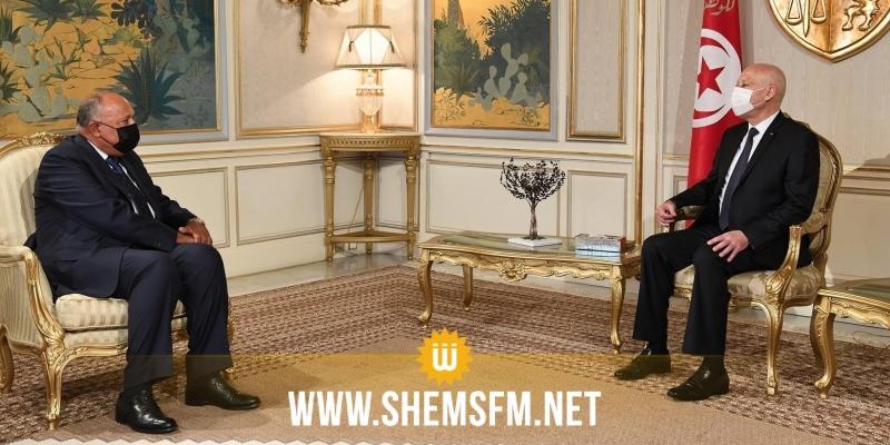 وزير الخارجية المصري ينقل رسالة شفوية لرئيس الجمهورية