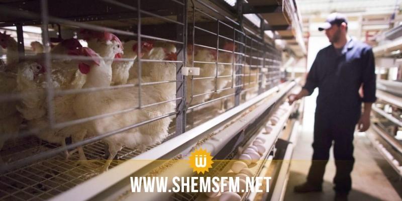 صفاقس: الهياكل المشرفة على قطاع التربية الحيوانية تعلن الدخول في إعتصام مفتوح بداية من اليوم