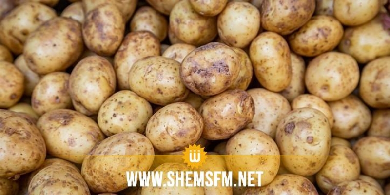 صفاقس: حجز 22 طنا من البطاطا و16 طن من التفاح في مخزن عشوائي
