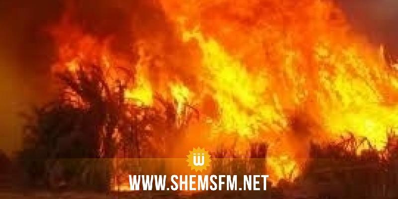 الحماية المدنية: إطفاء 45 حريقاً خلال يوم