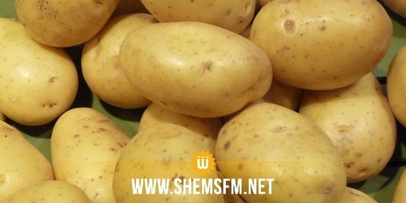 سوسة: حجز 130 طنا من البطاطا