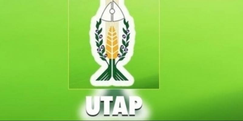 اتحاد الفلاحة يُحذر من تداعيات الترفيع في أسعار بذور الحبوب