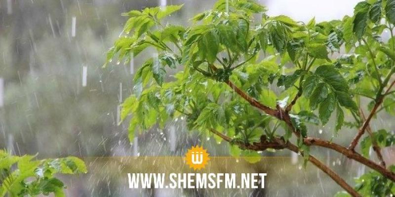 اليوم: ظهور خلايا رعديّة ترافقها أمطار بعدة مناطق والحرارة في انخفاض