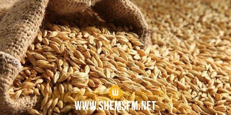 نقابة الفلاّحين تدعو إلى الإبقاء على أسعار بذور الحبوب المعتمدة في الموسم السابق