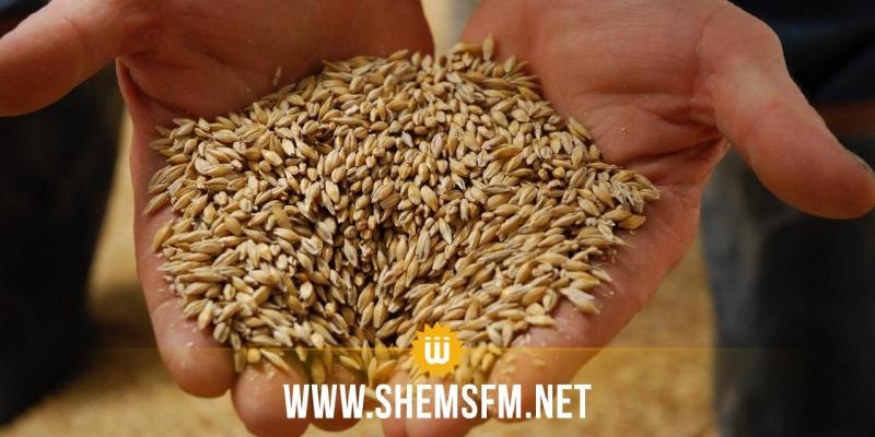 Le SYNAGRI appelle au maintien des prix des semences des céréales en vigueur